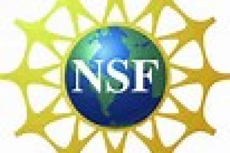Dissertation improvement nsf